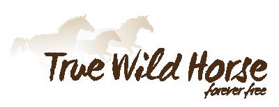 True Wild Horse